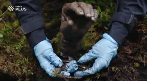 Dnes půjde o případ vraždy. Tělo se najde v rašeliništi.